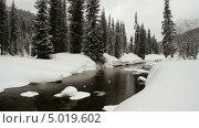 Купить «Зимний лес с рекой», видеоролик № 5019602, снято 11 августа 2013 г. (c) Юрий Пономарёв / Фотобанк Лори