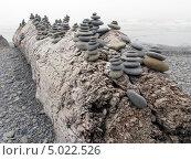 Камни на бревне на берегу океана - пляж Ла-Пуш (2013 год). Стоковое фото, фотограф Константин Саночкин / Фотобанк Лори
