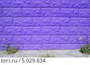 Купить «Фиолетовая кирпичная стена», фото № 5029834, снято 9 сентября 2008 г. (c) Арестов Андрей Павлович / Фотобанк Лори