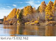 Купить «Река Иркут осенью», фото № 5032162, снято 3 октября 2010 г. (c) Виктория Катьянова / Фотобанк Лори