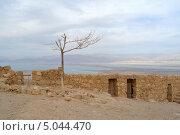 Вид с Массады на Мертвое море (2013 год). Стоковое фото, фотограф Igor Kaplan / Фотобанк Лори