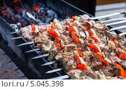 Купить «Аппетитный сочный шашлык жарится на мангале», фото № 5045398, снято 28 февраля 2020 г. (c) FotograFF / Фотобанк Лори