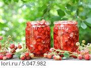 Купить «Варенье из земляники», фото № 5047982, снято 19 июня 2013 г. (c) Володина Ольга / Фотобанк Лори