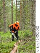 Лесоруб отрезает ветки срубленного дерева бензопилой. Стоковое фото, фотограф Валерия Попова / Фотобанк Лори