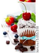 Купить «Шоколадный торт с свежими ягодами», фото № 5055518, снято 7 июня 2013 г. (c) Наталия Кленова / Фотобанк Лори