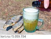 Рука человека разливает пиво. Стоковое фото, фотограф Александр Басов / Фотобанк Лори