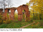 Купить «Золотая осень», фото № 5060354, снято 1 октября 2011 г. (c) Тавруева Надежда / Фотобанк Лори