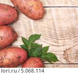 Купить «Клубни и листья картофеля на деревянном фоне», фото № 5068114, снято 28 июля 2013 г. (c) Валентина Разумова / Фотобанк Лори