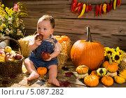 Купить «Ребенок играет с яблоками», фото № 5087282, снято 25 сентября 2012 г. (c) Ирина Кожемякина / Фотобанк Лори