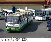 """Купить «Автобус № 184 отъезжает от станции """"Выхино"""", Москва», эксклюзивное фото № 5091126, снято 8 июня 2010 г. (c) lana1501 / Фотобанк Лори"""