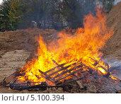 Купить «Большой костер  - горящее дерево», фото № 5100394, снято 29 сентября 2013 г. (c) SevenOne / Фотобанк Лори