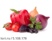 Купить «Свежие овощи на белом фоне», фото № 5108178, снято 20 марта 2012 г. (c) Natalja Stotika / Фотобанк Лори