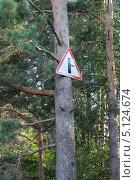 """Знак """"примыкание второстепенной дороги"""" в лесу. Стоковое фото, фотограф Яковлева Анастасия / Фотобанк Лори"""