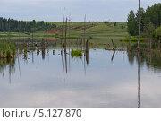 Речной пейзаж. Стоковое фото, фотограф Александр Онучин / Фотобанк Лори