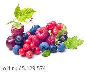 Купить «Различные ягоды», фото № 5129574, снято 1 августа 2013 г. (c) Валентина Разумова / Фотобанк Лори