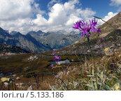 Горный пейзаж. Стоковое фото, фотограф LittleAs / Фотобанк Лори