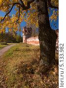 Золотая осень в Царском Селе (2013 год). Редакционное фото, фотограф Алексей Смирнов / Фотобанк Лори