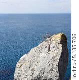 Купить «Пейзаж с высохшим деревцем на скале», фото № 5135706, снято 10 сентября 2013 г. (c) Denis Kh. / Фотобанк Лори