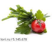 Купить «Зеленый лук и помидор черри», фото № 5145678, снято 2 апреля 2012 г. (c) Natalja Stotika / Фотобанк Лори