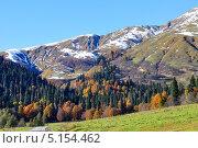 Купить «Осень в долине Ауадхары, Абхазия», фото № 5154462, снято 10 октября 2013 г. (c) Анна Мартынова / Фотобанк Лори