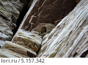 Птичье гнездо на скальном выступе, вид снизу. Стоковое фото, фотограф Александр Соловьев / Фотобанк Лори