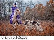 Купить «Конно-псовая охота, всадницы в амазонках», фото № 5165270, снято 5 октября 2013 г. (c) Julia Shepeleva / Фотобанк Лори
