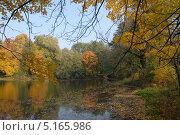 Купить «Вид на пруд Пионерский , ул. л-та Катина ( Hammer-Teich , Steffeckstraße). Парк Ратсхоф (нем. Rathshof) — один из парков Кёнигсберга, нынешнего Калининграда.», эксклюзивное фото № 5165986, снято 11 октября 2013 г. (c) Svet / Фотобанк Лори