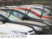 Купить «Новые автомобили подняли щетки», фото № 5167914, снято 25 октября 2012 г. (c) Анатолий Матвейчук / Фотобанк Лори