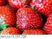 Красная спелая клубника. Стоковое фото, фотограф Ekaterina Klementyeva / Фотобанк Лори