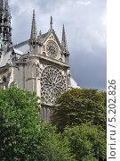 Купить «Южный фасад собора Нотр-Дам-де-Пари, Париж, Франция», фото № 5202826, снято 19 августа 2013 г. (c) Дарья Кравченко / Фотобанк Лори