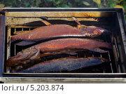 Купить «Копчение рыбы в коптильне на природе», эксклюзивное фото № 5203874, снято 12 октября 2013 г. (c) Елена Коромыслова / Фотобанк Лори