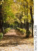 Осенний парк. Стоковое фото, фотограф Владислав Тропин / Фотобанк Лори