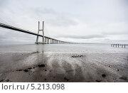 Мост Васко да Гама, Лиссабон, Португалия (2013 год). Стоковое фото, фотограф Надежда Бобкова / Фотобанк Лори