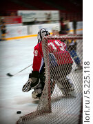 Купить «Хоккейный вратарь», фото № 5225118, снято 6 марта 2010 г. (c) BGodunoff / Фотобанк Лори