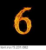 Цифра 6 в огне на черном фоне. Стоковое фото, фотограф Андрей Армягов / Фотобанк Лори