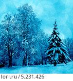 Купить «Зимняя картинка», фото № 5231426, снято 23 марта 2012 г. (c) ElenArt / Фотобанк Лори