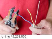 Зачистка проводов от изоляции. Стоковое фото, фотограф Владимир Ворона / Фотобанк Лори