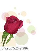 Бордовая роза на абстрактном фоне. Стоковая иллюстрация, иллюстратор Вероника Ковалева / Фотобанк Лори