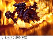 Красный дракон. Стоковое фото, фотограф Илья Ордовский-Танаевский / Фотобанк Лори