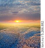 Купить «Воздушный вид заснеженного леса на фоне зимнего заката», фото № 5266882, снято 20 января 2012 г. (c) Владимир Мельников / Фотобанк Лори