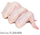 Купить «Сырые куриные крылья», фото № 5269858, снято 7 ноября 2013 г. (c) Насыров Руслан / Фотобанк Лори