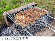 Купить «Мясо жарится на решетке», фото № 5271410, снято 20 марта 2019 г. (c) FotograFF / Фотобанк Лори