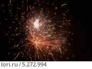 Купить «Красочный фейерверк в ночном небе», фото № 5272994, снято 13 октября 2012 г. (c) Иван Бондаренко / Фотобанк Лори