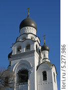 Купить «Храм-колокольня Воскресения Христова на Рогожском кладбище в Москве», фото № 5277986, снято 30 января 2012 г. (c) Alexey D. / Фотобанк Лори