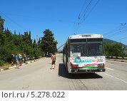 Купить «Ремонт в пути. Поломка троллейбуса на трассе Ялта-Симферополь», фото № 5278022, снято 11 июня 2013 г. (c) Ельцов Владимир / Фотобанк Лори