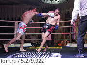 Купить «Профессиональный бокс в Подольске», эксклюзивное фото № 5279922, снято 16 ноября 2013 г. (c) Дмитрий Неумоин / Фотобанк Лори