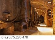 Купить «Винный монастырский погреб с бочками и бутылки с вином М. Оливето Маджоре, Тоскана, Италия», фото № 5280478, снято 28 сентября 2013 г. (c) Виктория Катьянова / Фотобанк Лори