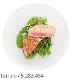 Стейки тунца с салатом. Стоковое фото, фотограф Федор Кондратенко / Фотобанк Лори
