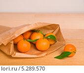 Купить «Свежие мандарины в бумажном пакете», фото № 5289570, снято 18 декабря 2012 г. (c) Наталья Двухимённая / Фотобанк Лори