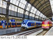 Купить «Современный быстрый пассажирский поезд на станции», фото № 5290630, снято 19 сентября 2013 г. (c) Vitas / Фотобанк Лори
